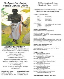 Fatima bulletin alternate cover.